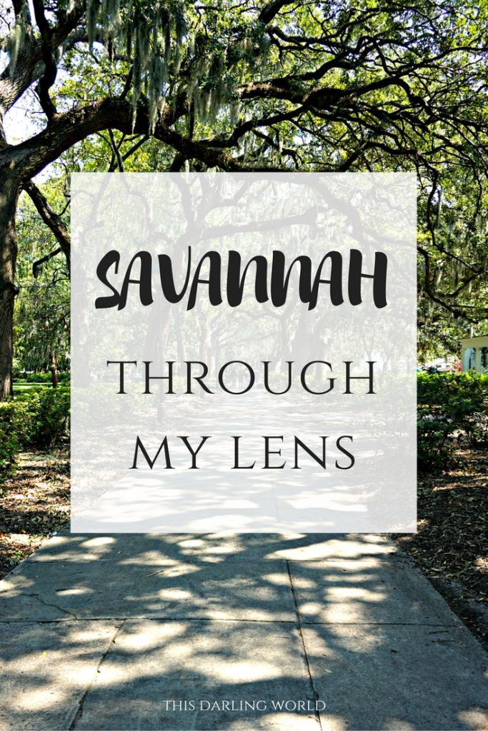 Savannah Through my Lens | thisdarlingworld.com