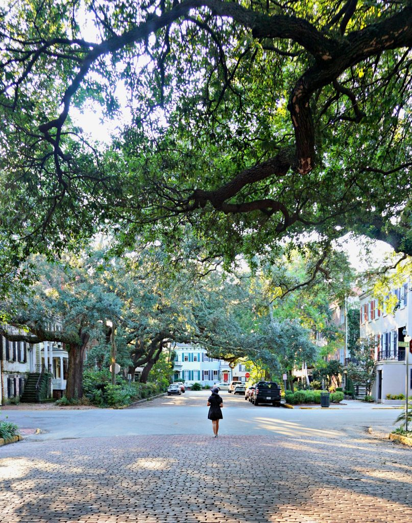 Savannah GA Through my Lens | Thisdarlingworld.com