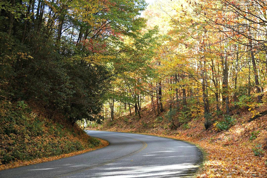 Blue Ridge Parkway fall drive | thisdarlingworld.com